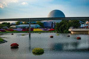 Disney World's 50th Anniversary